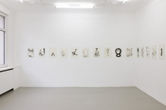 antje dorn - galerie michael sturm -rare animals and numbers